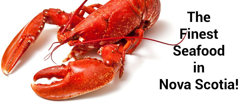 The Finest Seafood in Nova Scotia! - lobster