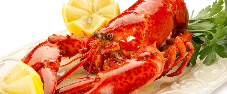 Lobster: Live or Cooked